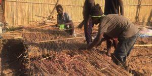 干し草などで畑を覆うマルチ作り